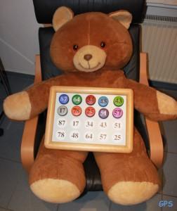 Teddy beim Hirnleistungstest